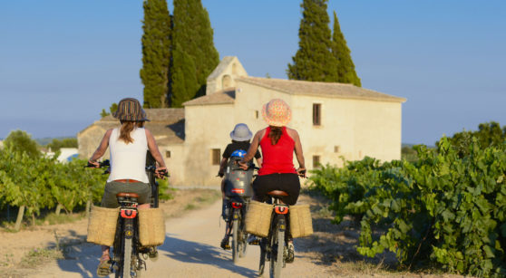Catalonia among vineyards: wine tourism experiences