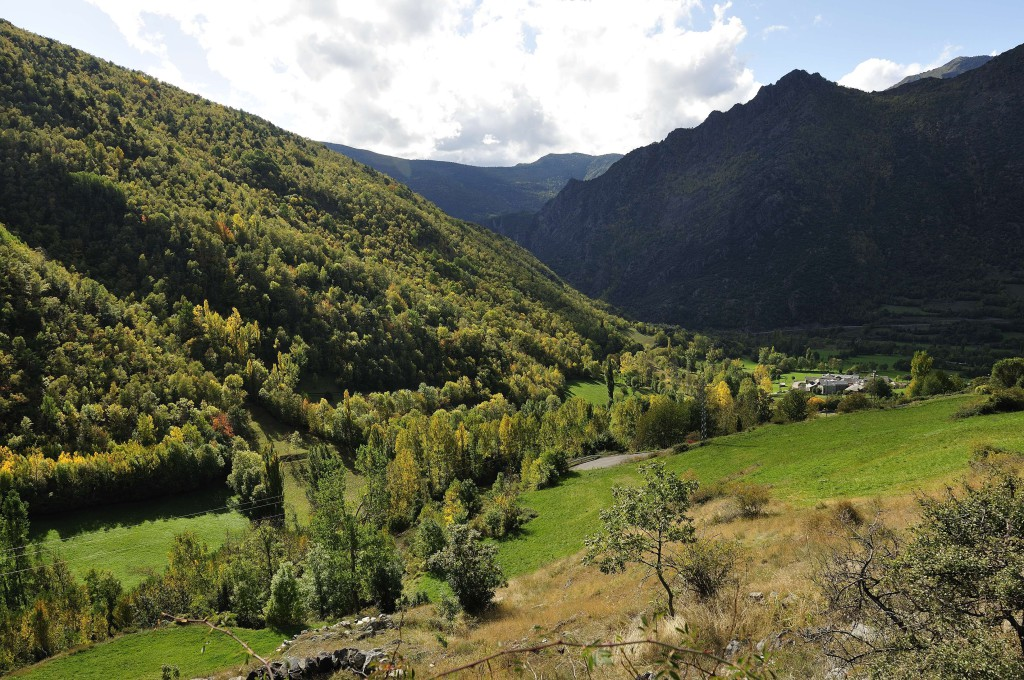 Parc Natural de l'Alt Pirineu/Richard Martin