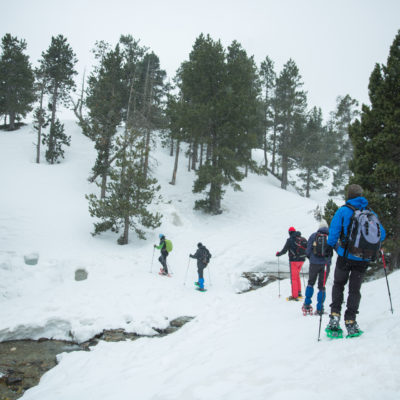 Snowshoeing outings in the National Park of Les Capçaleres del Ter i del Freser (Setcases).