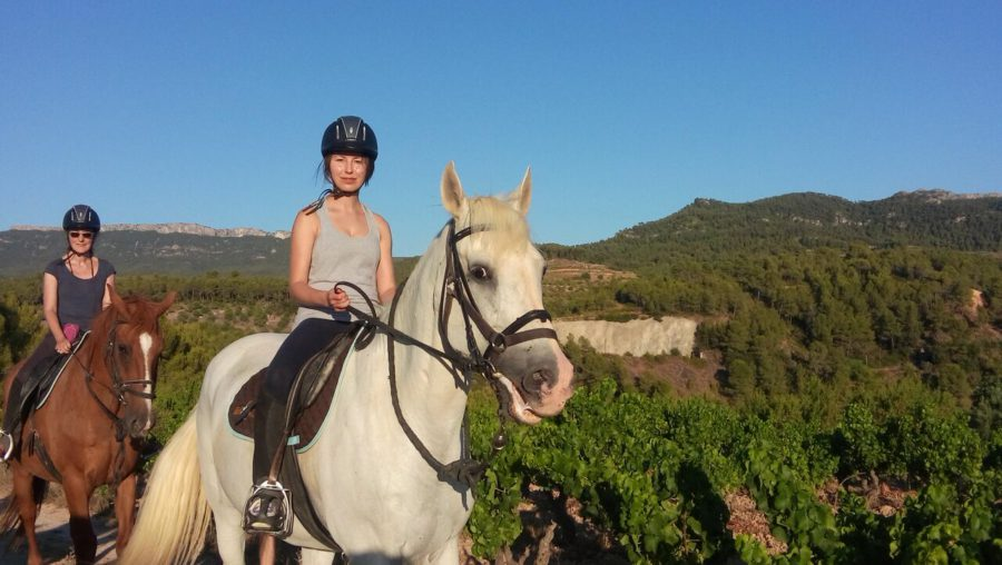 La DO Montsant à cheval. © Servikayak