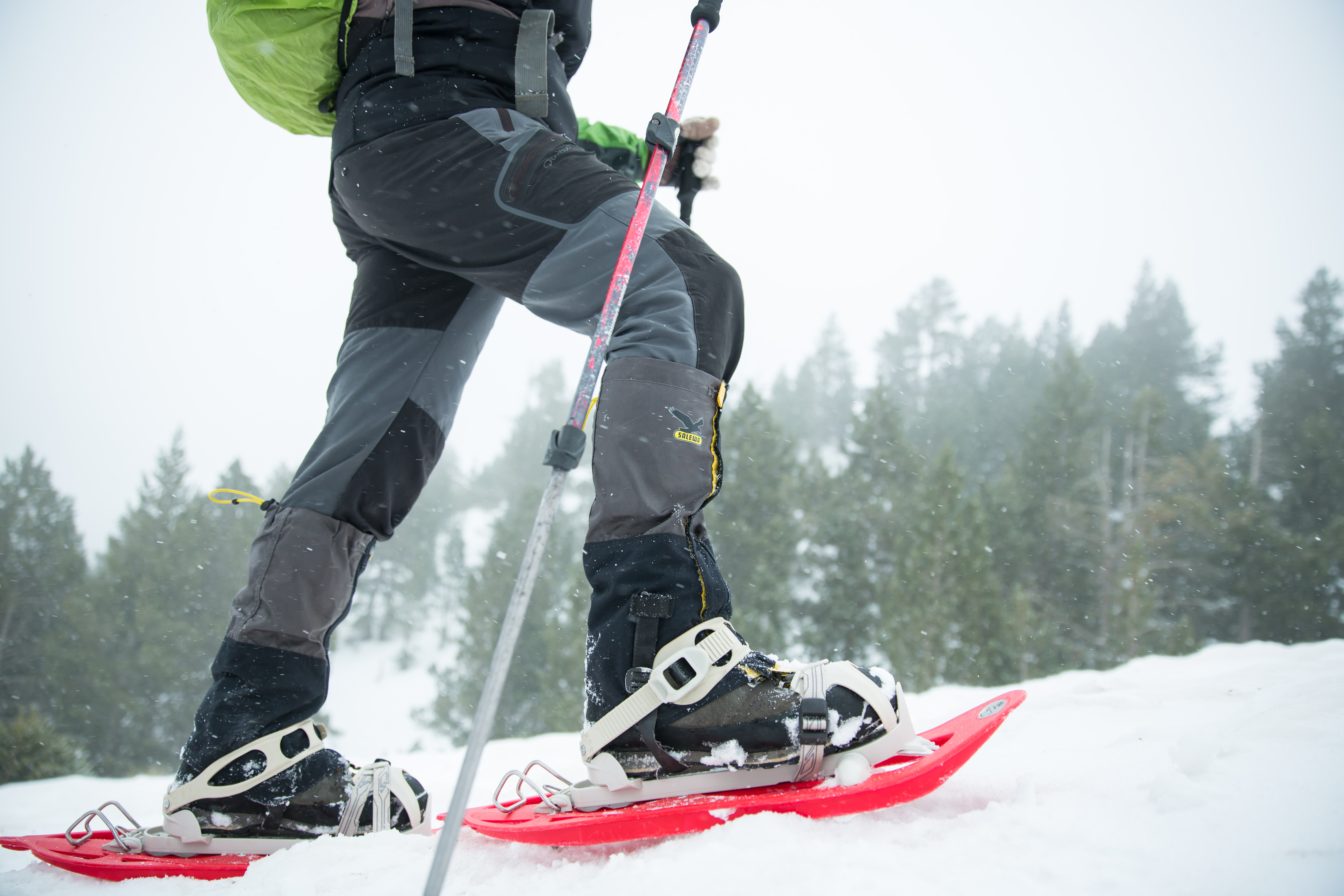 Walking on snowshoes does not require much skill.