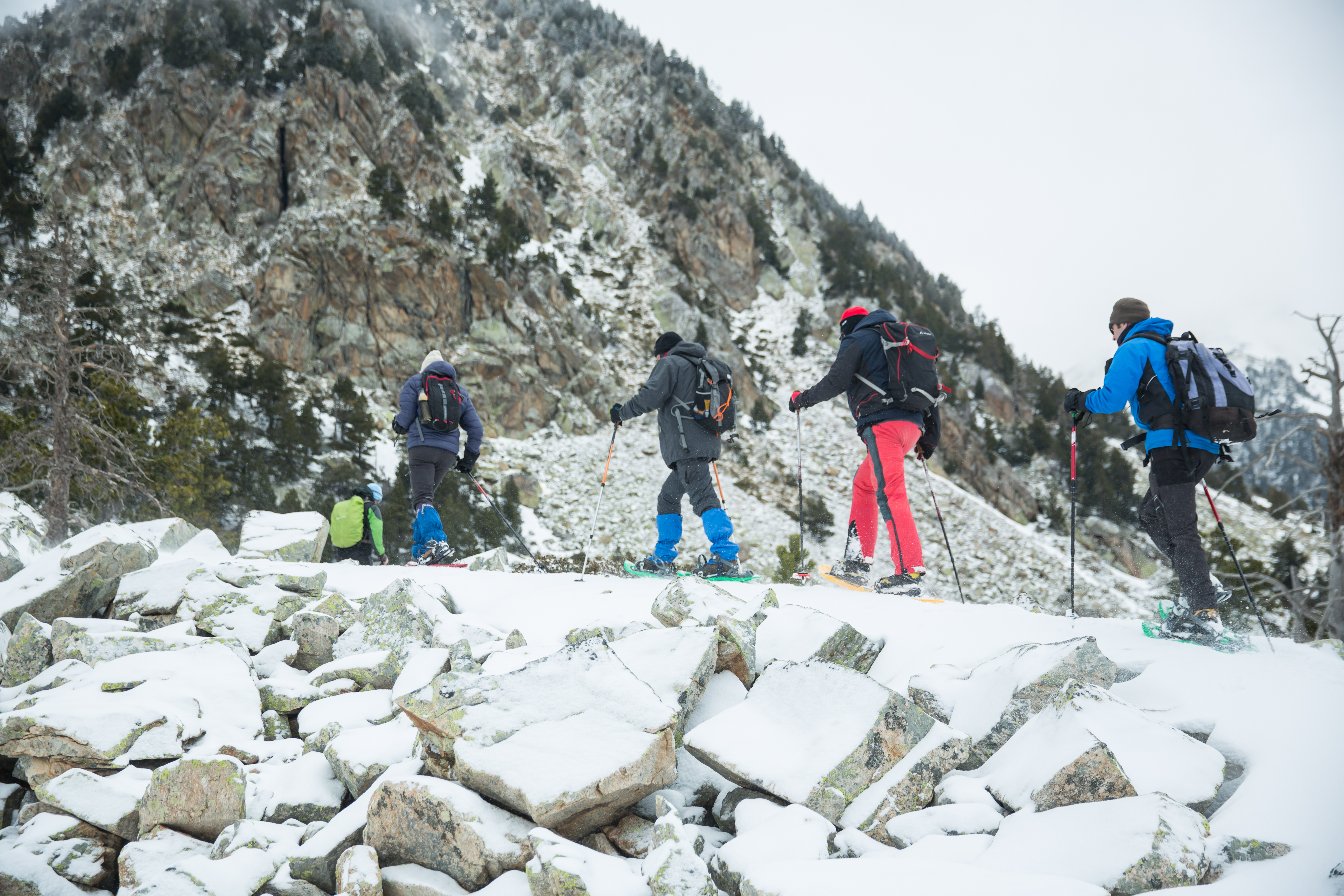 A walk on snowshoes around the National Park of Les Capçaleres del Ter i del Freser (Setcases).